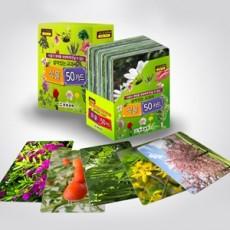 식물카드(증강현실 AR)